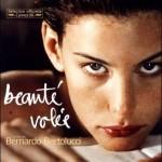 Beaute_volee