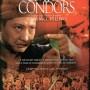 Eastern_condors