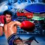 Fighting_beauty_(Beautiful_boxer)