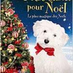 Un_petit_chien_pour_noel