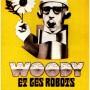 Woody_et_les_robots
